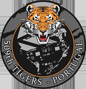 tigers_new-300x230