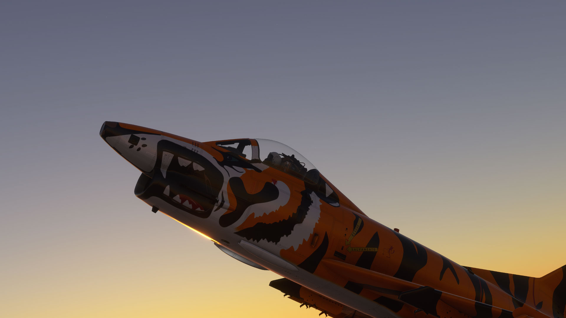 Microsoft-Flight-Simulator-Screenshot-2021.02.18---01.04.46